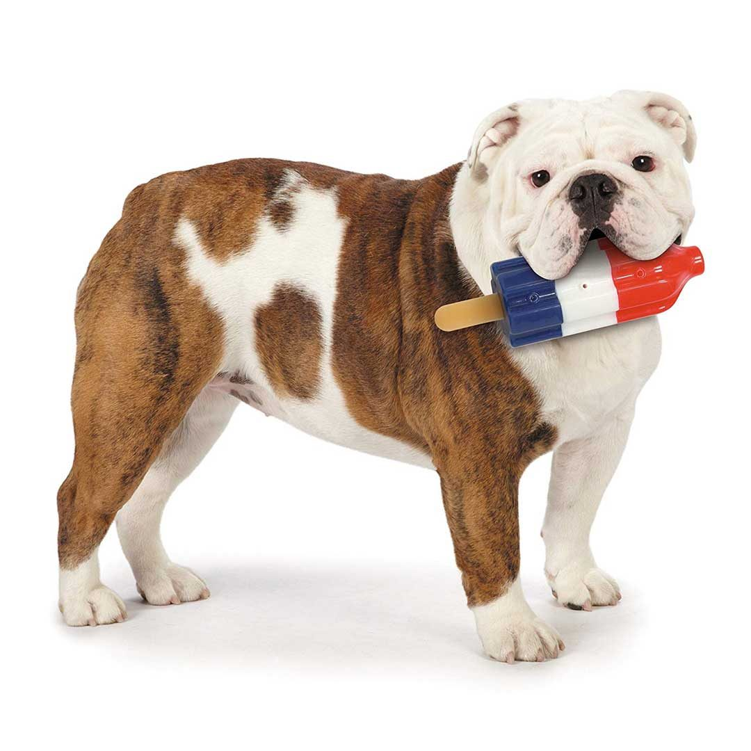 cool pup mini rocket pop hydrating dog chew toy